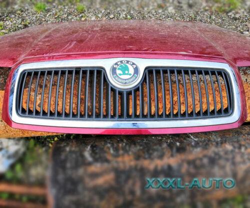 Фото Решітка радіатора Skoda Fabia 1 (червоний колір) 6Y085366801C